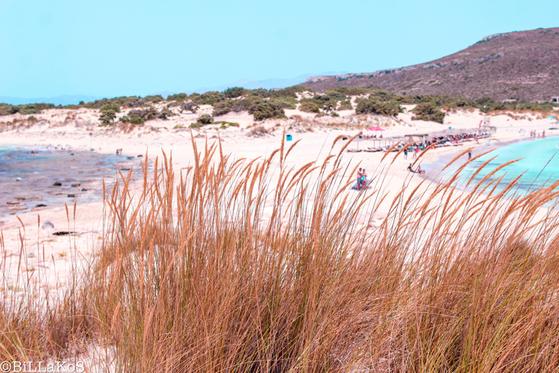 Ελαφόνησος: Πόσο καλοκαίρι χωράει σε ένα τόσο μικρό νησί?